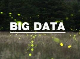 CBNData数据盛典: 连接大数据 探索商业新价值